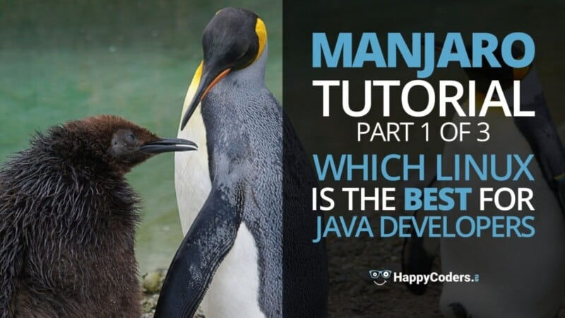 Manjaro tutorial - Which Linux is the best for Java developers - feature image